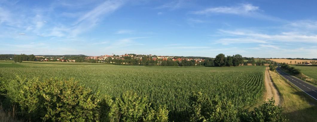 Panoramablick auf die Pfalzgrafenstadt