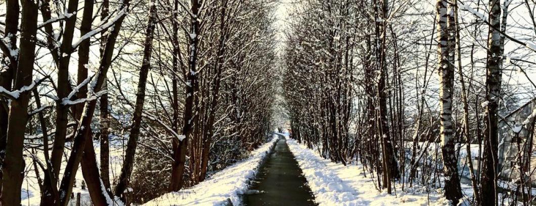 Bocklradweg im Winter